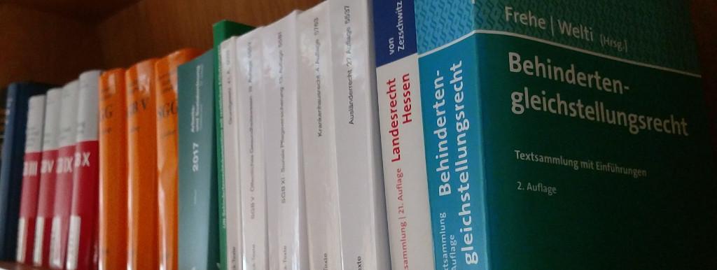 Bücher im Bücherregal, im Vordergrund die Textsammlung Behindertengleichsrecht von Frehe | Welti